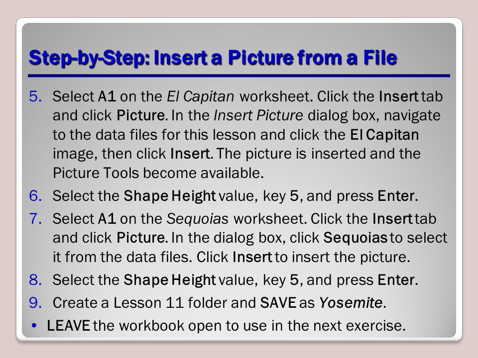 Step-by-Step: Insert a Picture from a File 5.Select A1 on the El Capitan worksheet. Click the Insert tab and click Picture. In the Insert Picture dial