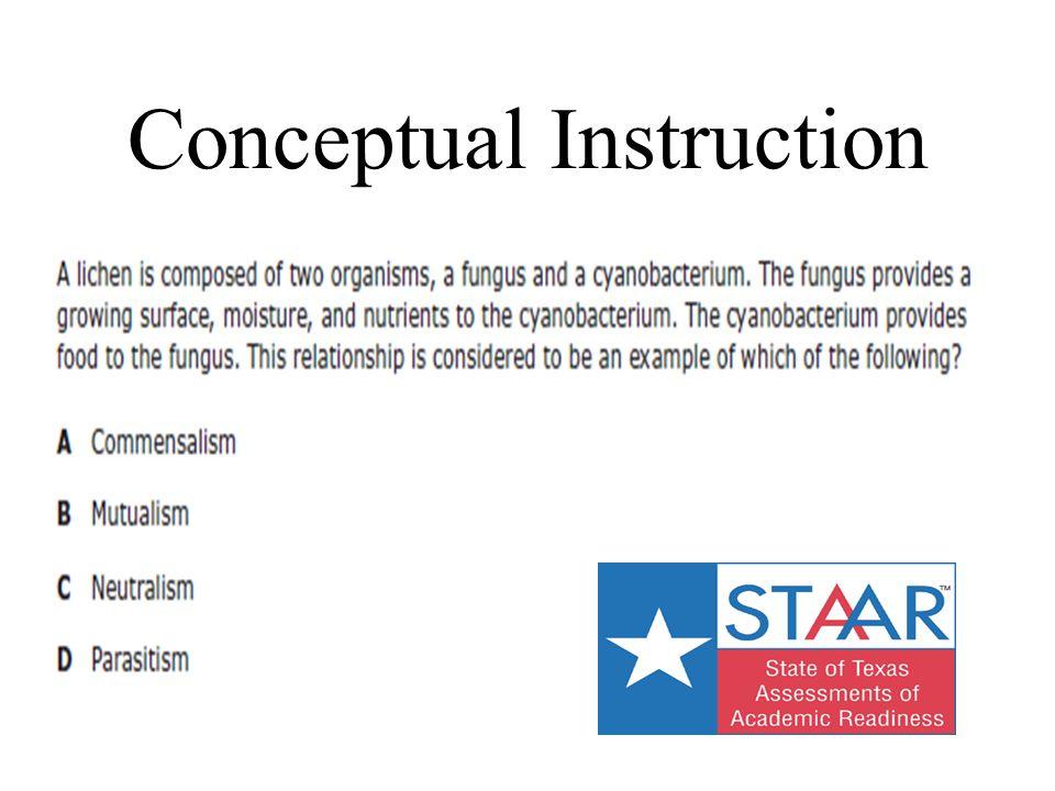 Conceptual Instruction