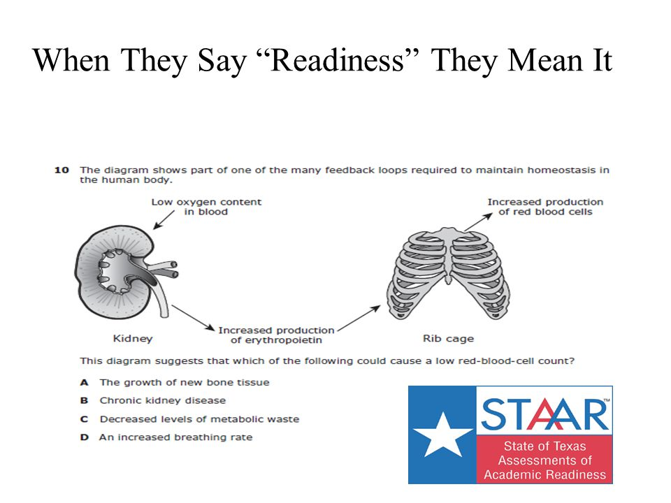 """When They Say """"Readiness"""" They Mean It"""