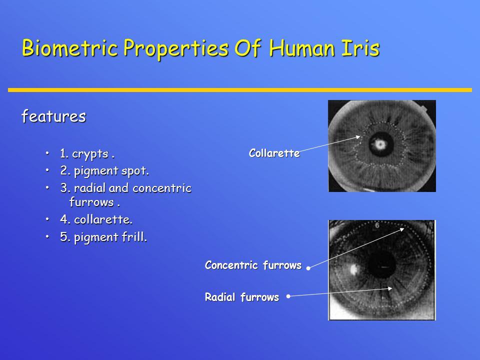 Biometric Properties Of Human Iris features 1. crypts.1.