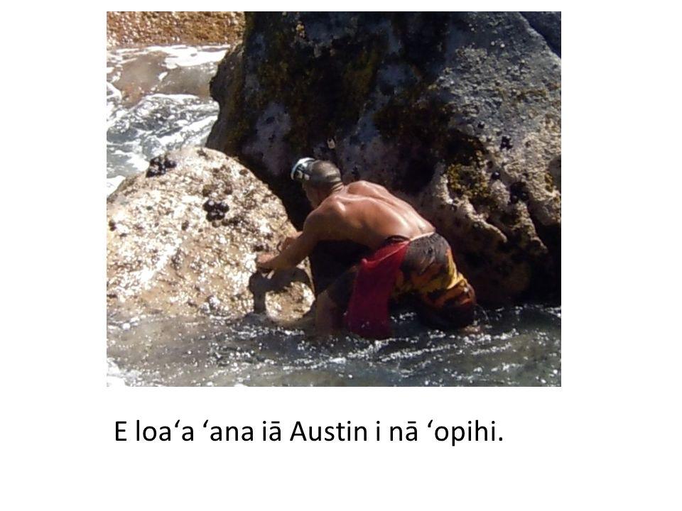 E loaʻa ʻana iā anakala Lew nā heʻe.