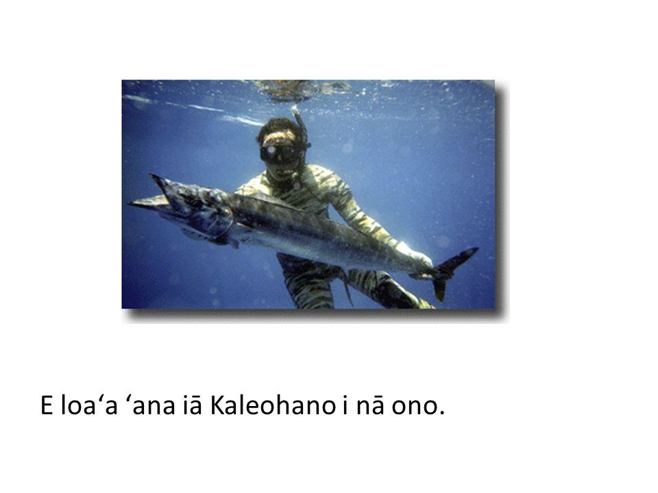 E loaʻa ʻana iā Koaliʻi i nā āholehole.