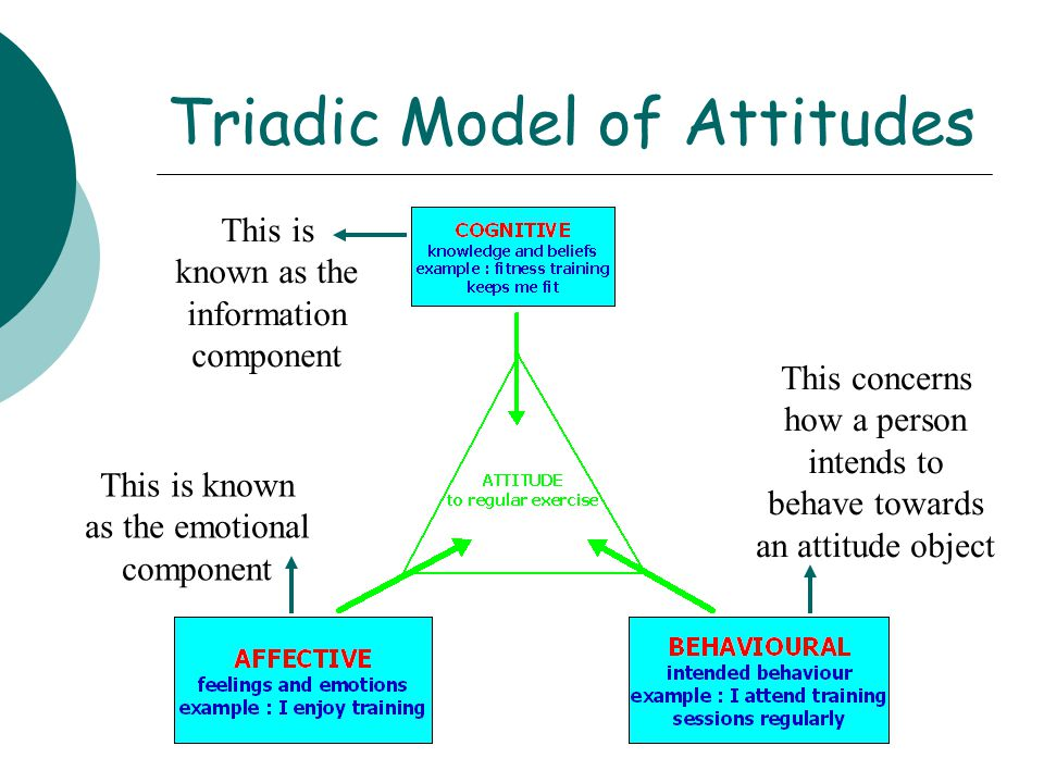 Triadic Model of Attitudes This is known as the information component This concerns how a person intends to behave towards an attitude object This is
