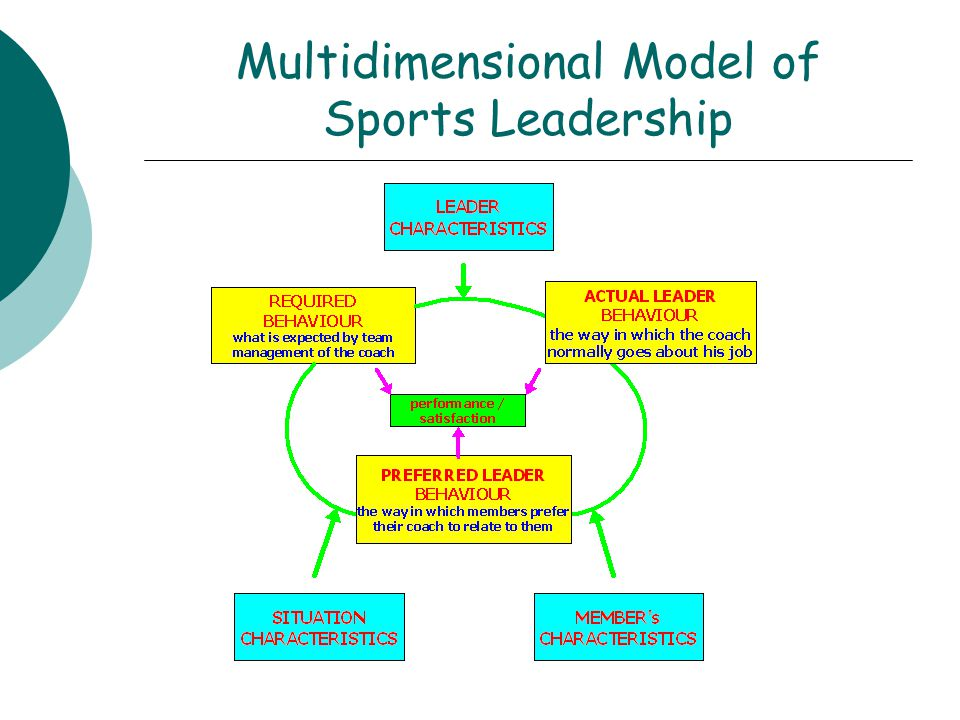 Multidimensional Model of Sports Leadership