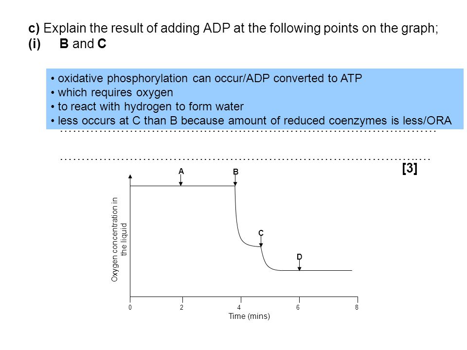 c) Explain the result of adding ADP at the following points on the graph; (i)B and C …………………………………………………………………………… ………………………………………………………………………..… [3]