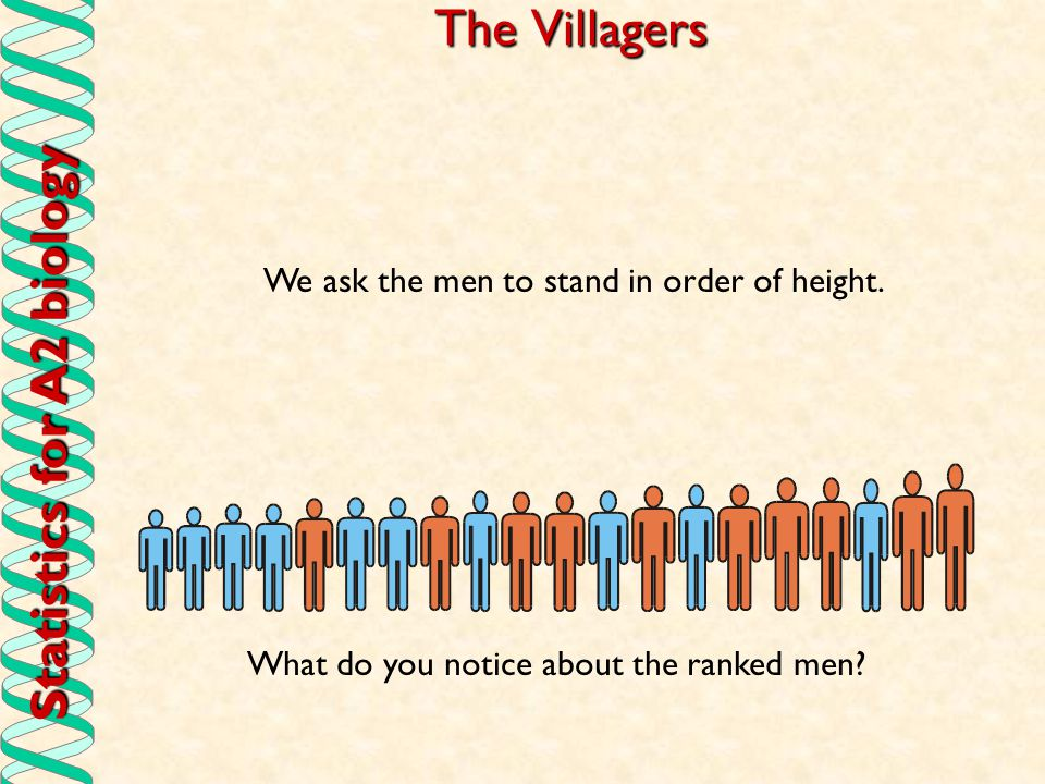 Statistics for A2 biology The villagers (2) 1) We give a number for the rank of each.