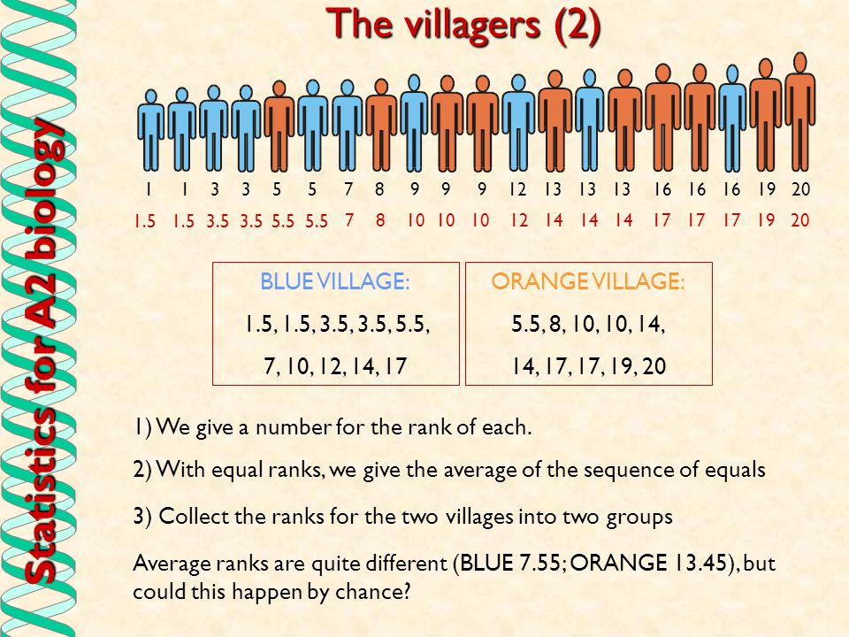 Statistics for A2 biology The Mann-Whitney Test (1) Average rank for BLUE is 7.55; Average rank for ORANGE 13.45; This looks pretty convincing, but to be sure, we have to allow for the size of samples as a big difference in ranks gives more certainty when the sample is big.