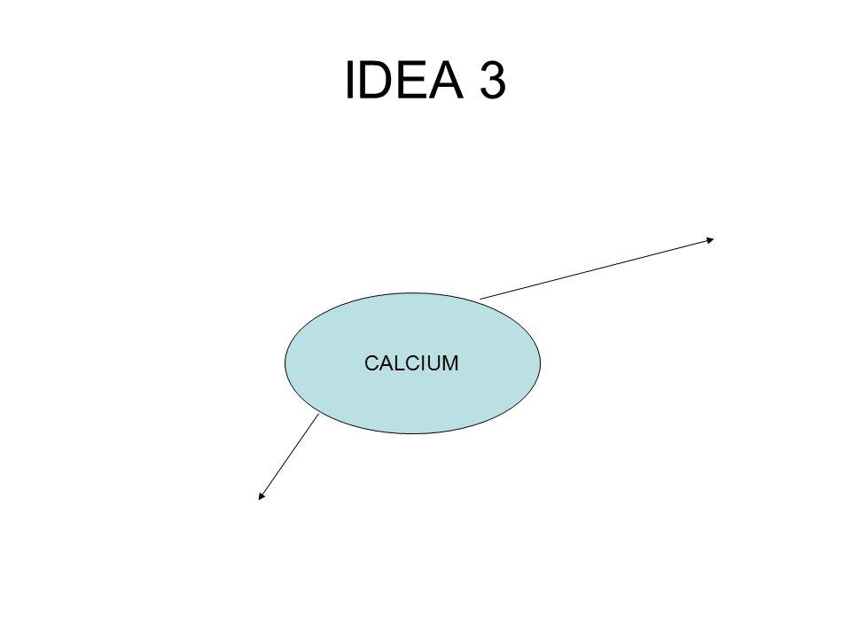 IDEA 3 CALCIUM
