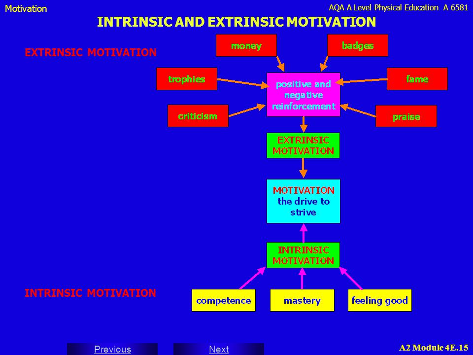AQA A Level Physical Education A 6581 Next Previous A2 Module 4E.15 INTRINSIC AND EXTRINSIC MOTIVATION EXTRINSIC MOTIVATION Motivation INTRINSIC MOTIV