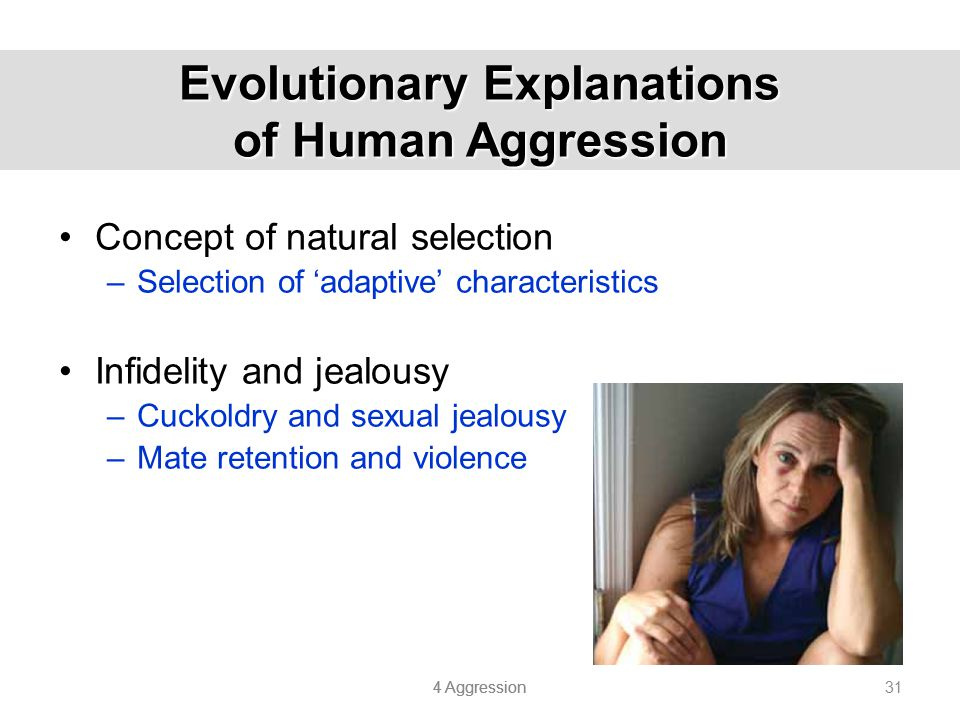 4 Aggression 31 Evolutionary Explanations of Human Aggression Concept of natural selection –Selection of 'adaptive' characteristics Infidelity and jea