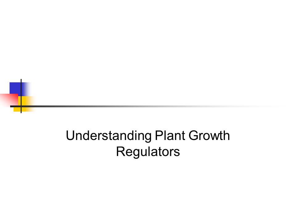 Understanding Plant Growth Regulators