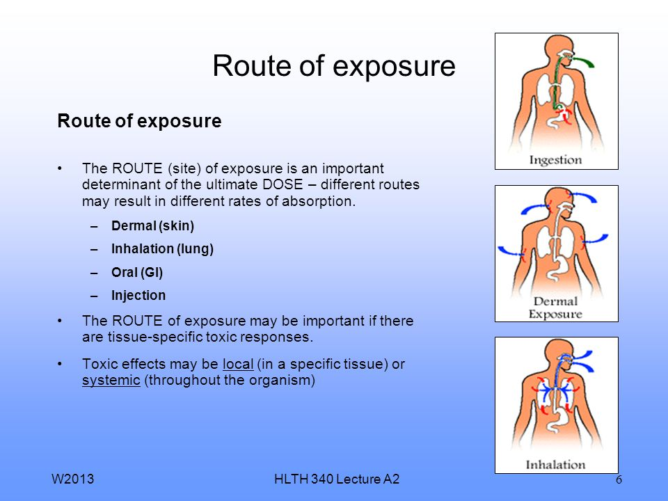 HLTH 340 Lecture A2W2013 5 Toxicokinetic and toxicodynamic pathways jointly affect toxicity
