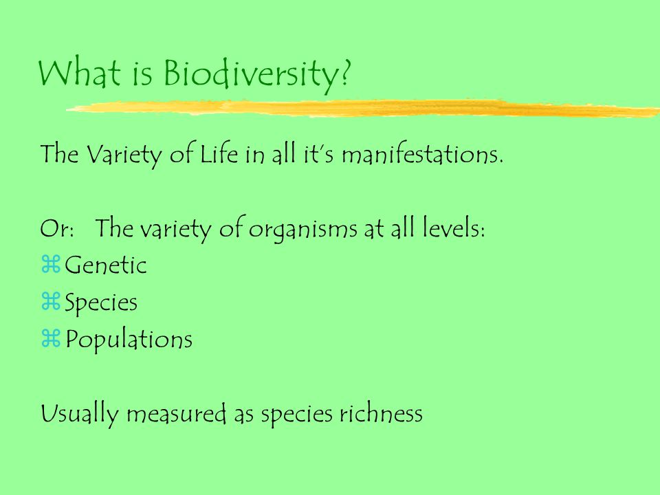 What is Biodiversity. The Variety of Life in all it's manifestations.