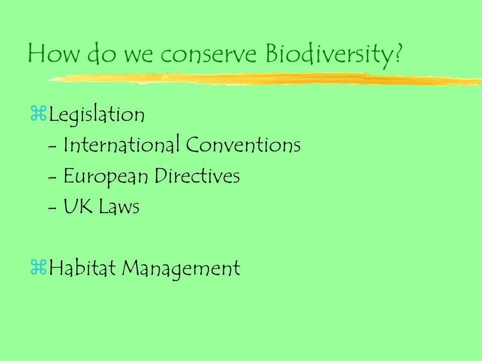 How do we conserve Biodiversity.