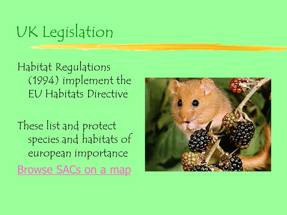 UK Legislation Habitat Regulations (1994) implement the EU Habitats Directive These list and protect species and habitats of european importance Browse SACs on a map