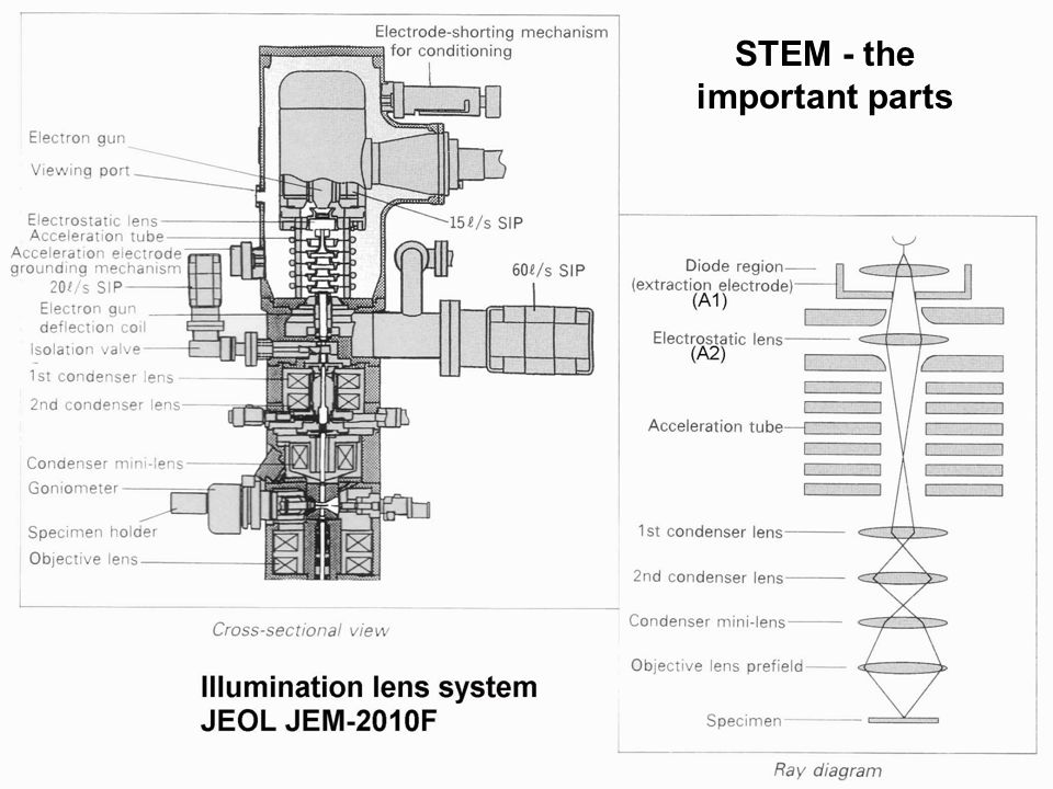UIC Electron Microscopy Service STEM - the important parts