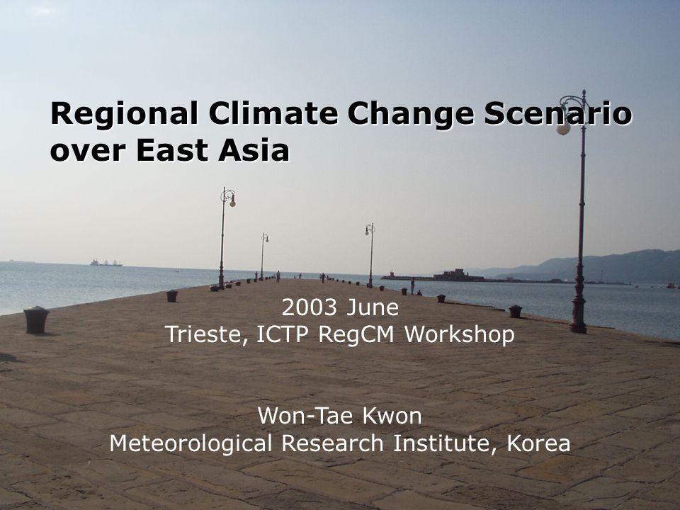 Regional Climate Change Scenario over East Asia 2003 June Trieste, ICTP RegCM Workshop Won-Tae Kwon Meteorological Research Institute, Korea