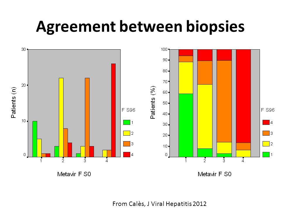 Agreement between biopsies From Calès, J Viral Hepatitis 2012