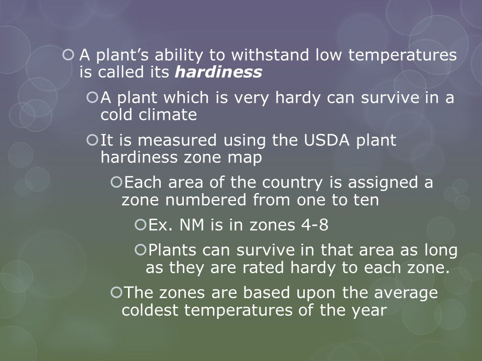  A plant's ability to withstand low temperatures is called its hardiness  A plant which is very hardy can survive in a cold climate  It is measured using the USDA plant hardiness zone map  Each area of the country is assigned a zone numbered from one to ten  Ex.