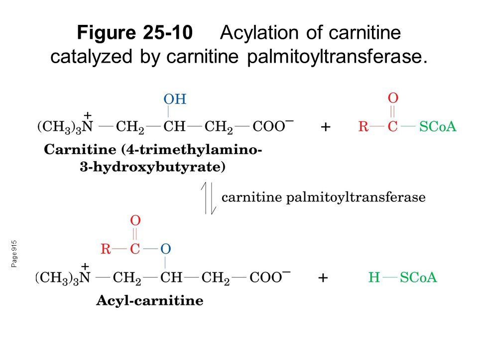 Figure 25-10Acylation of carnitine catalyzed by carnitine palmitoyltransferase. Page 915