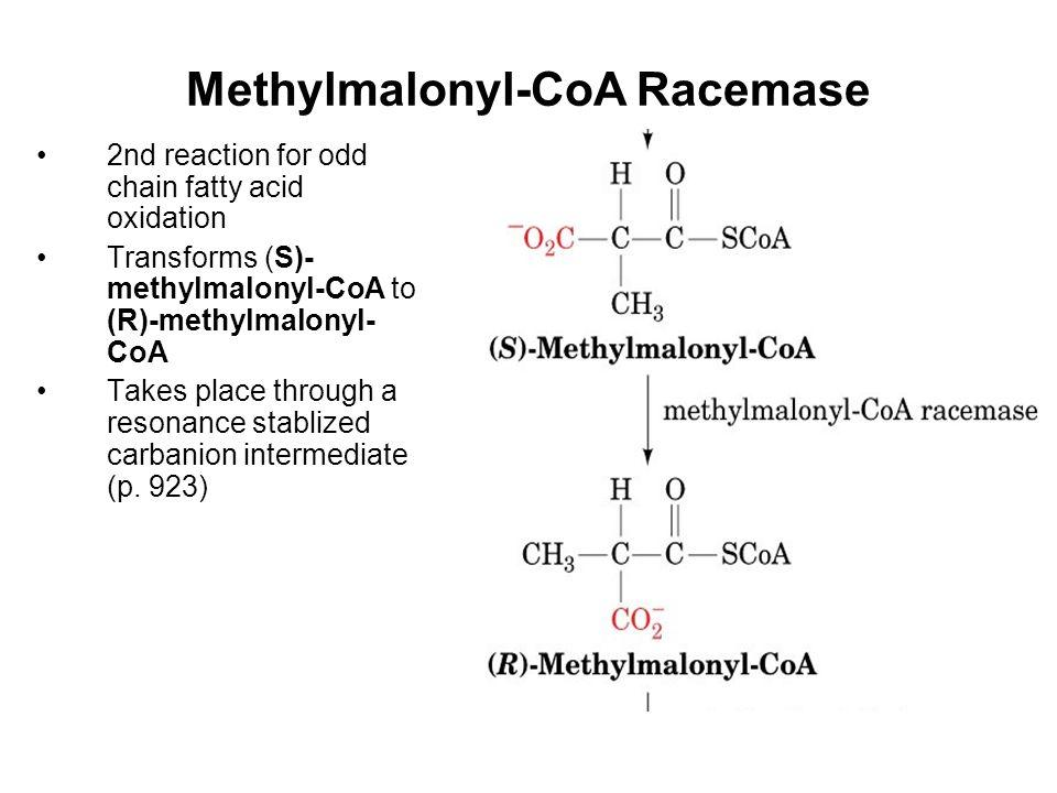 Methylmalonyl-CoA Racemase 2nd reaction for odd chain fatty acid oxidation Transforms (S)- methylmalonyl-CoA to (R)-methylmalonyl- CoA Takes place through a resonance stablized carbanion intermediate (p.