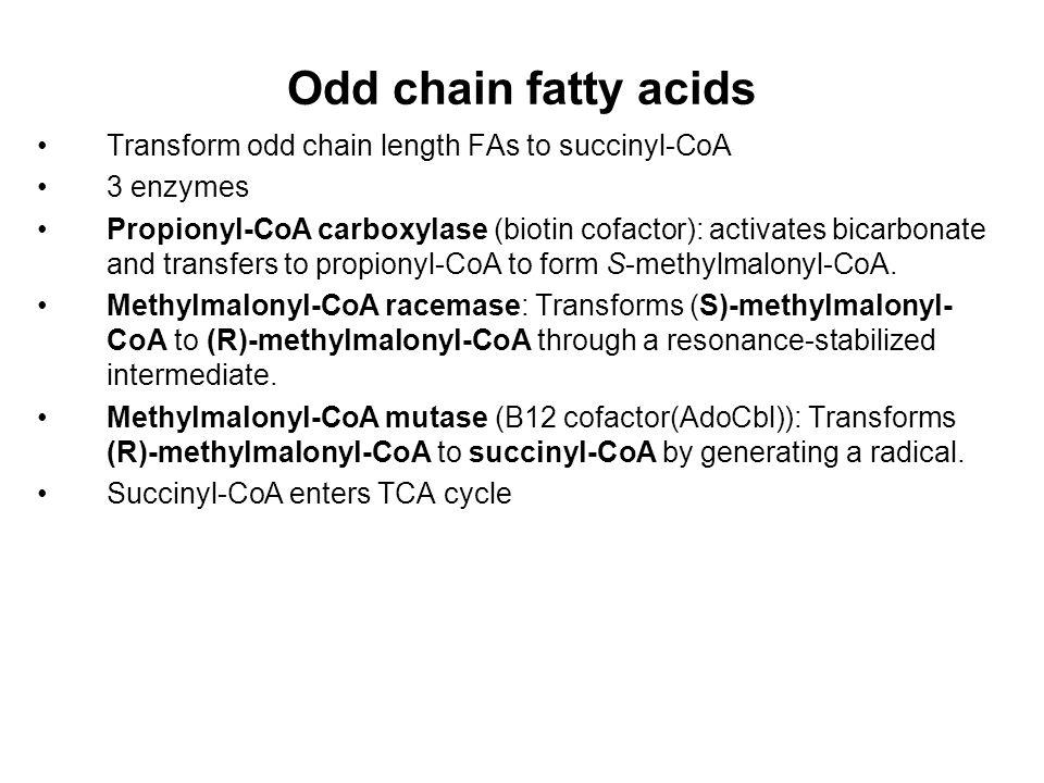 Odd chain fatty acids Transform odd chain length FAs to succinyl-CoA 3 enzymes Propionyl-CoA carboxylase (biotin cofactor): activates bicarbonate and transfers to propionyl-CoA to form S-methylmalonyl-CoA.