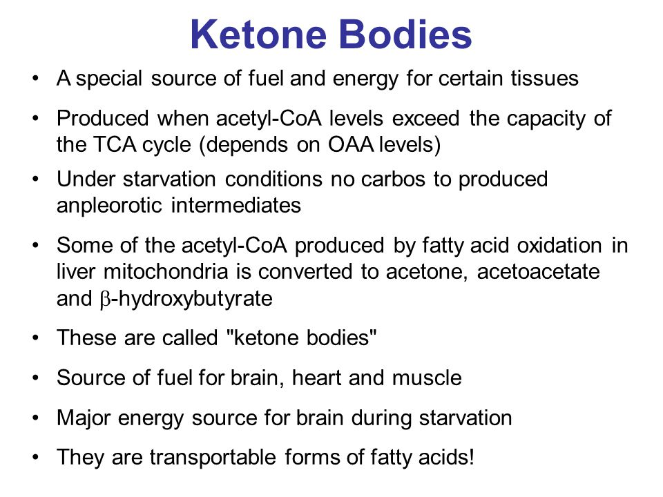 Ketone Bodies A special source of fuel and energy for certain tissues Produced when acetyl-CoA levels exceed the capacity of the TCA cycle (depends on OAA levels) Under starvation conditions no carbos to produced anpleorotic intermediates Some of the acetyl-CoA produced by fatty acid oxidation in liver mitochondria is converted to acetone, acetoacetate and  -hydroxybutyrate These are called ketone bodies Source of fuel for brain, heart and muscle Major energy source for brain during starvation They are transportable forms of fatty acids!