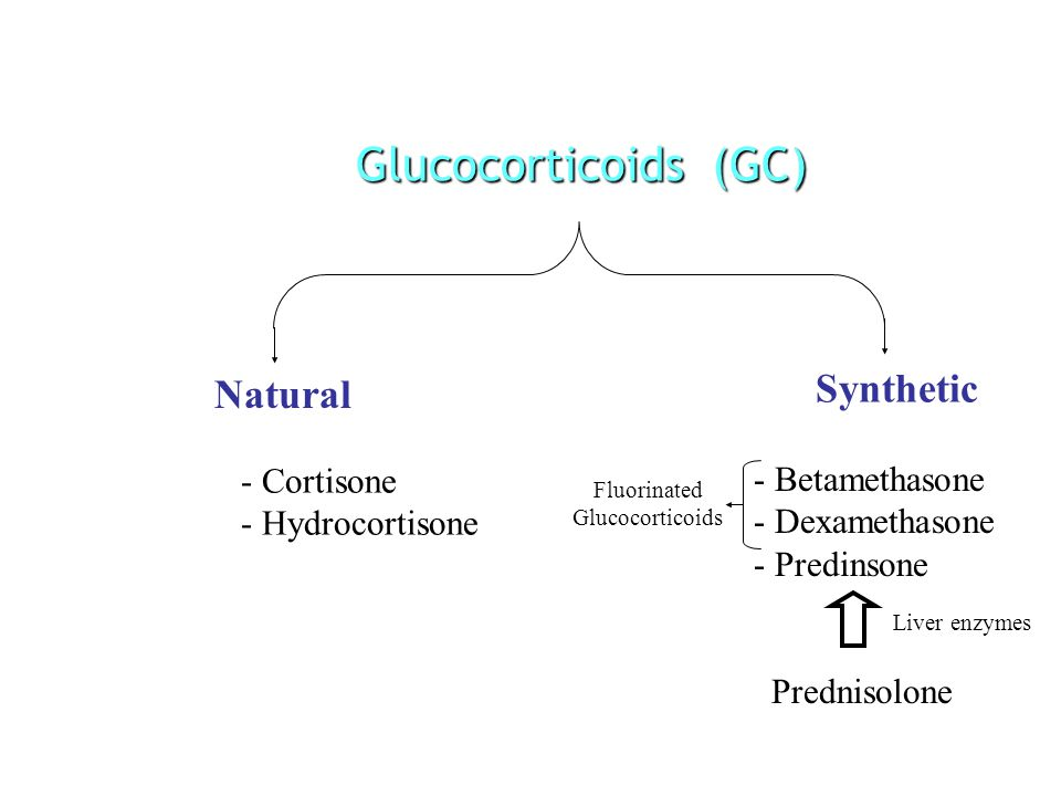 Glucocorticoids (GC) Natural Synthetic - Cortisone - Hydrocortisone - Betamethasone - Dexamethasone - Predinsone Fluorinated Glucocorticoids Prednisolone Liver enzymes