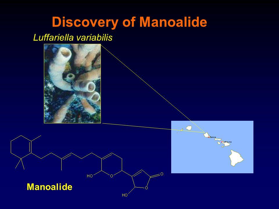 Discovery of Manoalide Luffariella variabilis Manoalide