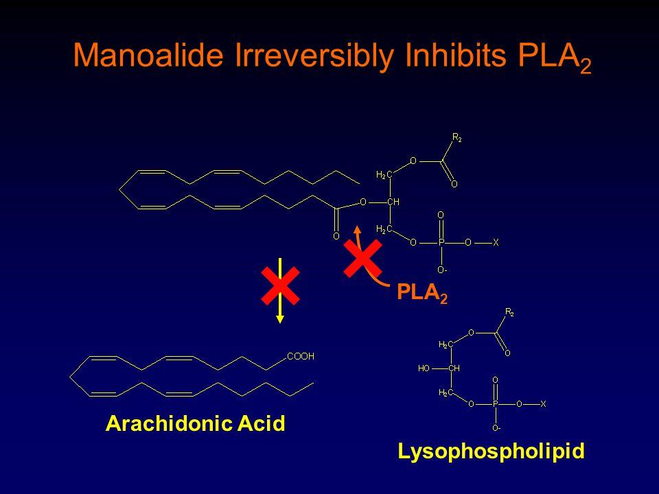 PLA 2 Manoalide Irreversibly Inhibits PLA 2 Arachidonic Acid Lysophospholipid