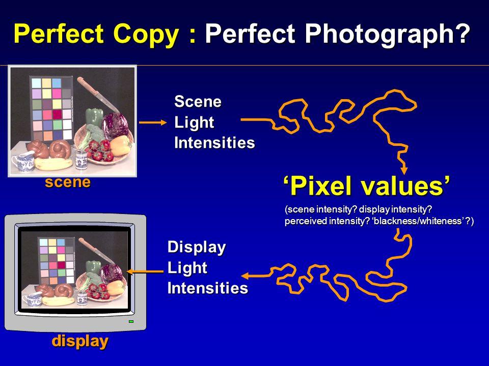 scene scene display SceneLightIntensities DisplayLightIntensities 'Pixel values' (scene intensity.