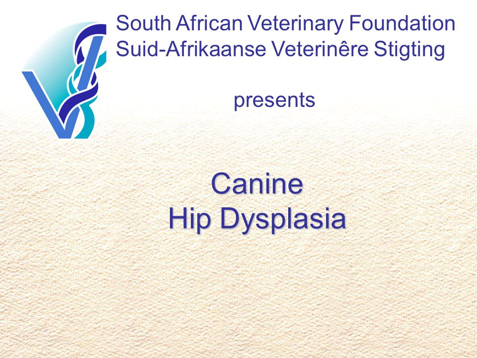 South African Veterinary Foundation Suid-Afrikaanse Veterinêre Stigting presents Canine Hip Dysplasia