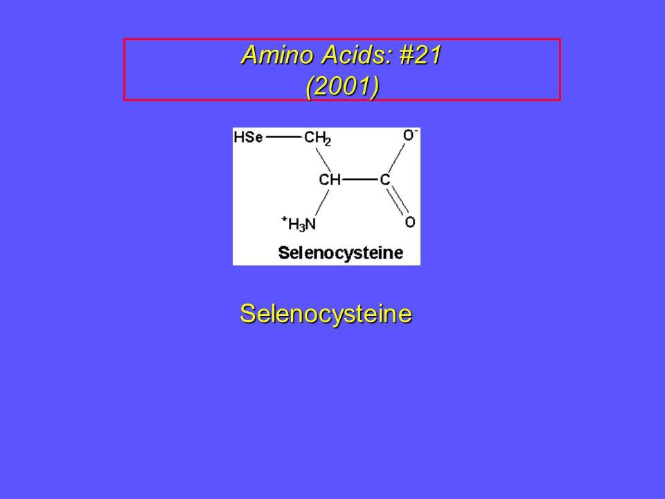 Amino Acids: #21 (2001) Selenocysteine