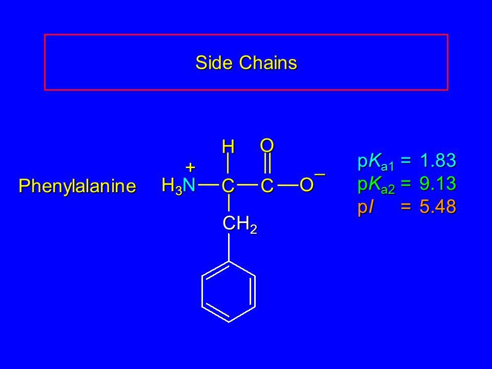 Side Chains Phenylalanine pK a1 = 1.83 pK a2 =9.13 pI =5.48 H3NH3NH3NH3N CCOO – H + CH 2