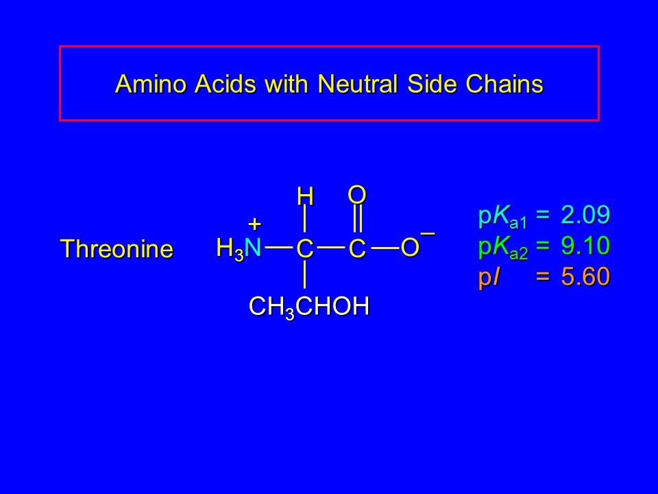 Amino Acids with Neutral Side Chains Threonine pK a1 = 2.09 pK a2 =9.10 pI =5.60 H3NH3NH3NH3N CC O O – CH 3 CHOH H +