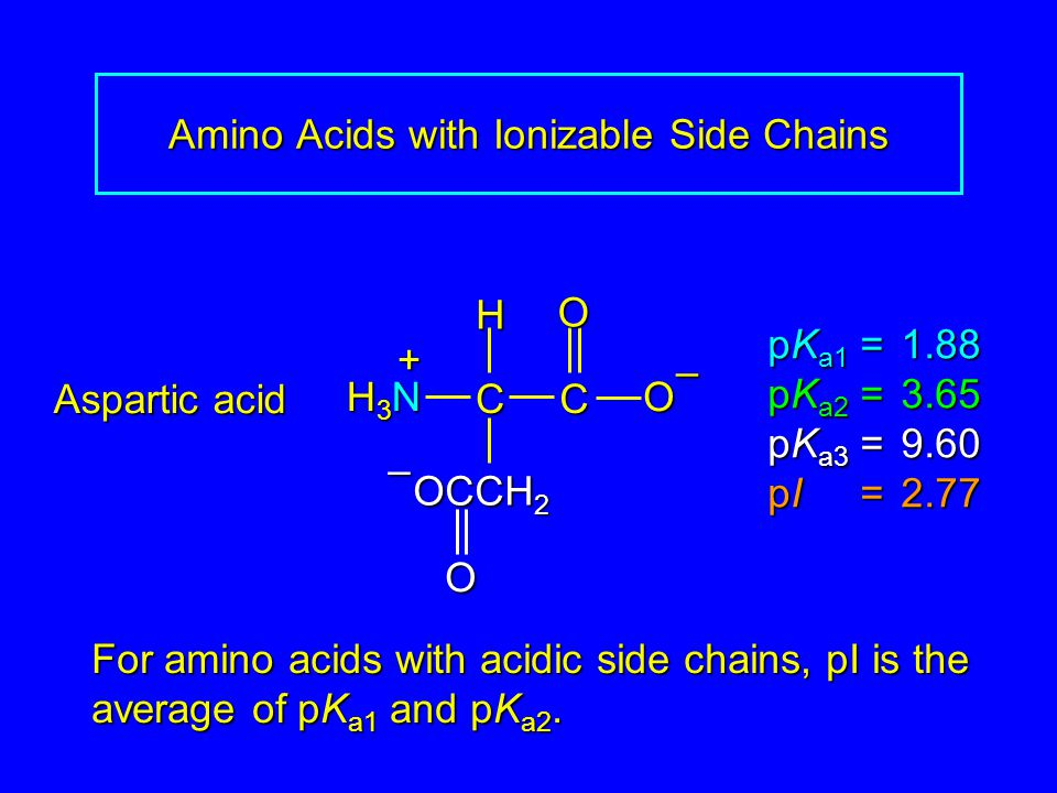 Amino Acids with Ionizable Side Chains Aspartic acid pK a1 = 1.88 pK a2 =3.65 pK a3 =9.60 pI =2.77 H3NH3NH3NH3N CC O O – H + OCCH 2 O– For amino acids