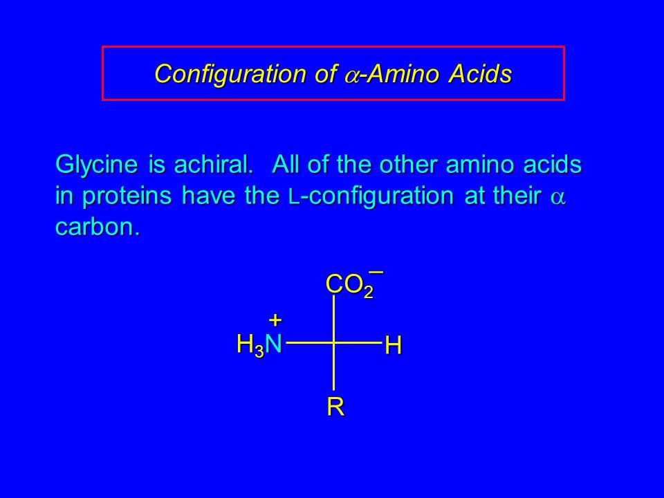 Configuration of  -Amino Acids Glycine is achiral. All of the other amino acids in proteins have the L -configuration at their  carbon. H3NH3NH3NH3N
