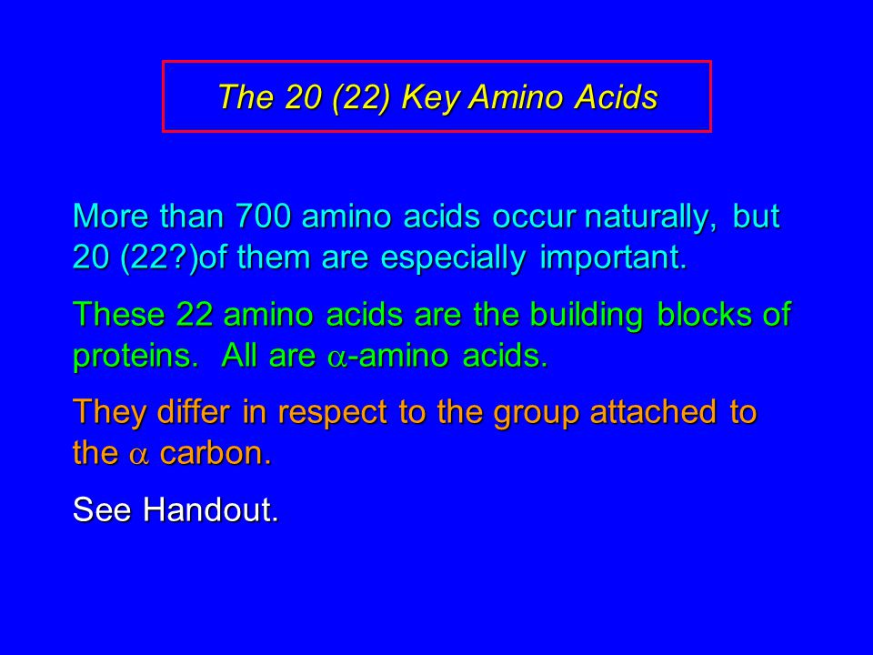 The 20 (22) Key Amino Acids More than 700 amino acids occur naturally, but 20 (22?)of them are especially important. These 22 amino acids are the buil