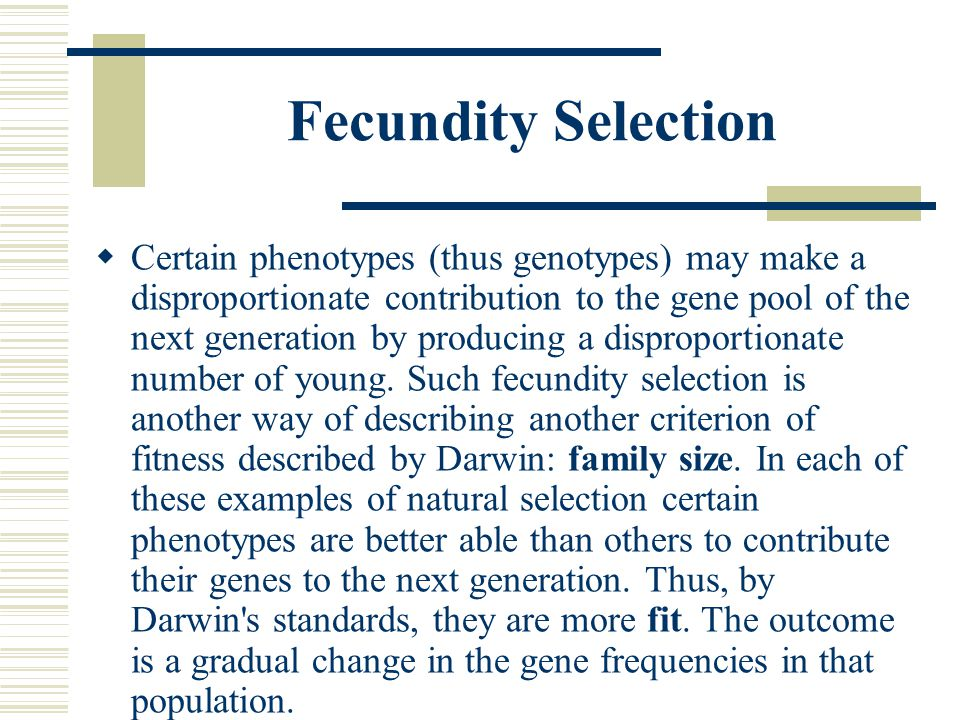 Fecundity Selection  Certain phenotypes (thus genotypes) may make a disproportionate contribution to the gene pool of the next generation by producin