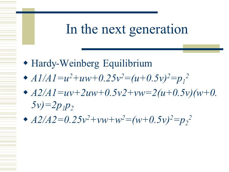  Hardy-Weinberg Equilibrium  A1/A1=u 2 +uw+0.25v 2 =(u+0.5v) 2 =p 1 2  A2/A1=uv+2uw+0.5v2+vw=2(u+0.5v)(w+0. 5v)=2p 1 p 2  A2/A2=0.25v 2 +vw+w 2 =(