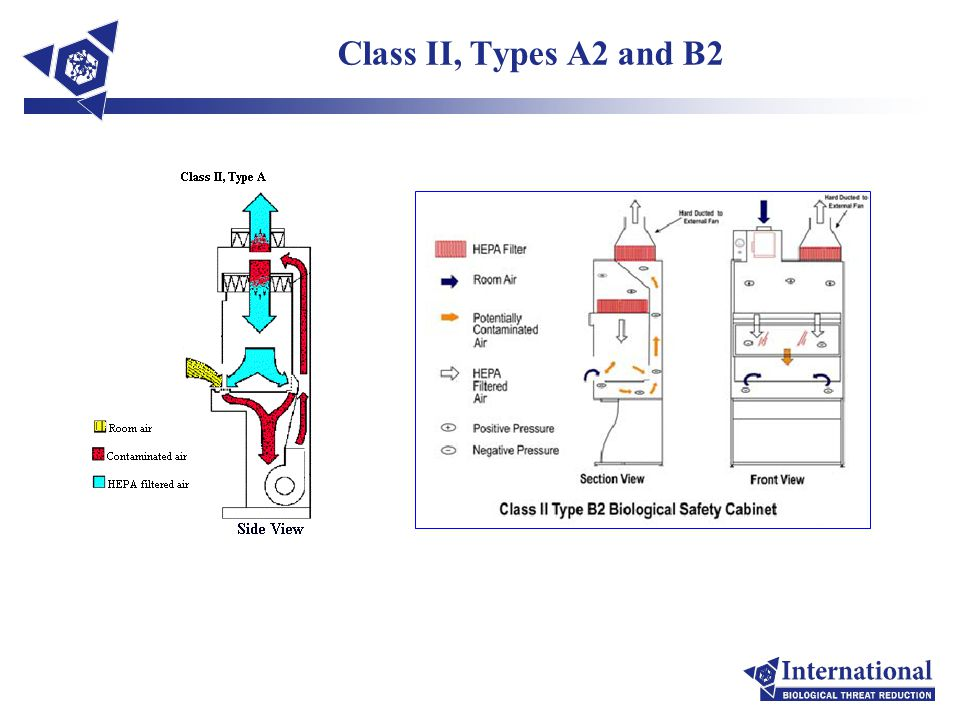 Class II, Types A2 and B2