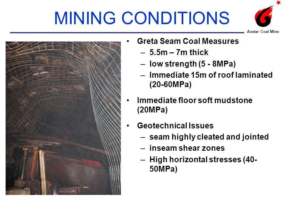 ZONE 2 – Roof Cavities Austar Coal Mine