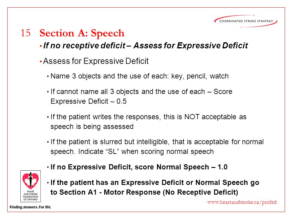 15 www.heartandstroke.ca/profed Section A: Speech If no receptive deficit – Assess for Expressive Deficit Assess for Expressive Deficit Name 3 objects