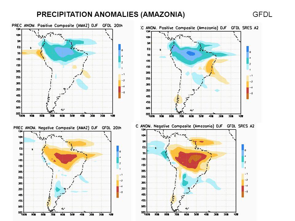 PRECIPITATION ANOMALIES (AMAZONIA)GFDL