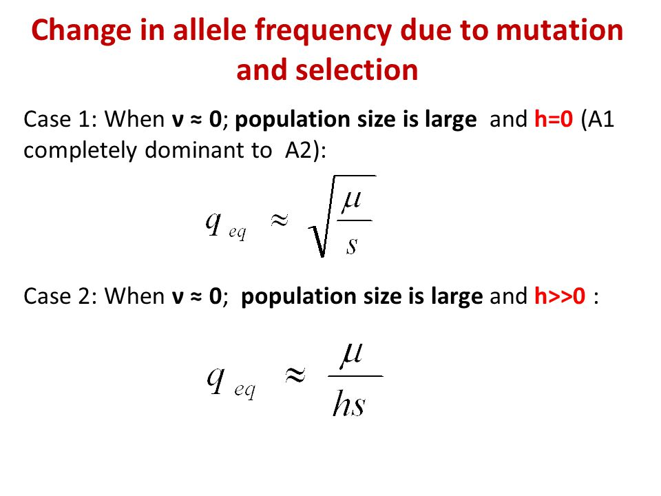 Change in allele frequency due to mutation and selection Case 1: When ν ≈ 0; population size is large and h=0 (A1 completely dominant to A2): Case 2: