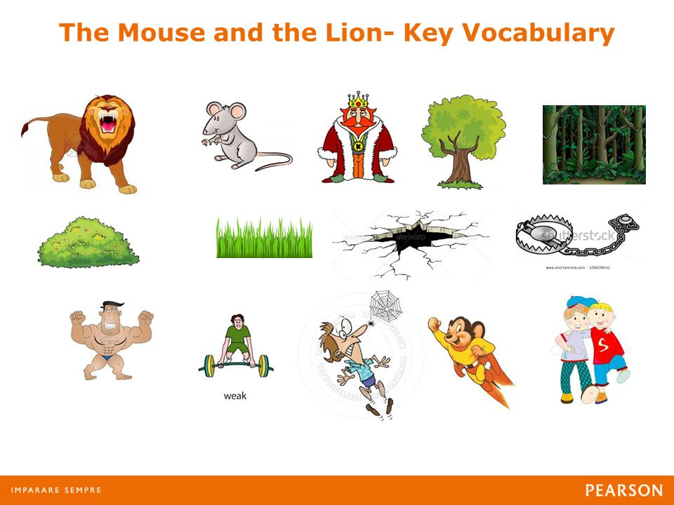 The Mouse and the Lion- Key Vocabulary
