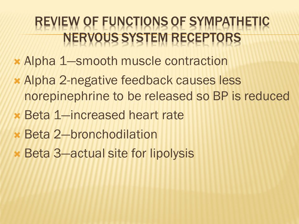  Alpha 1—smooth muscle contraction  Alpha 2-negative feedback causes less norepinephrine to be released so BP is reduced  Beta 1—increased heart rate  Beta 2—bronchodilation  Beta 3—actual site for lipolysis