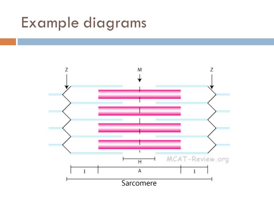 Example diagrams