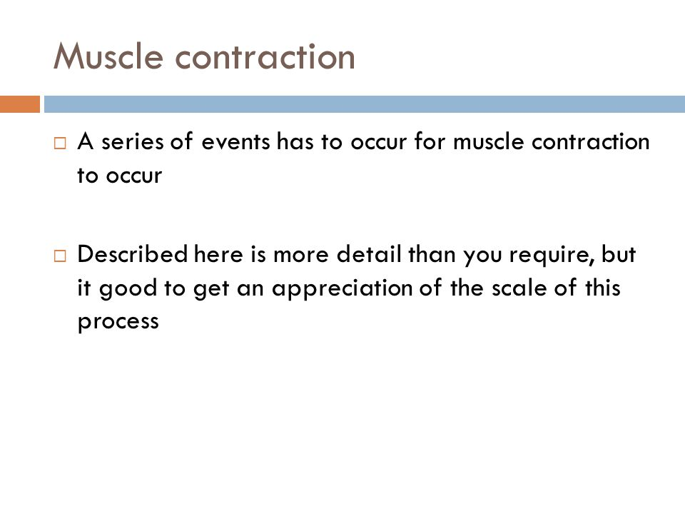 How muscles contract  1) A nervous impulse arrives at the neuromuscular junction, which causes a release of a chemical called Acetylcholine.