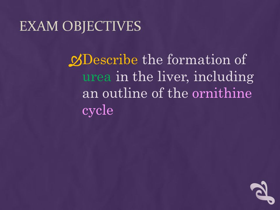 EXAM OBJECTIVES  Describe the formation of urea in the liver, including an outline of the ornithine cycle
